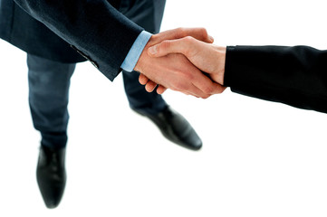 Hand shake between a business people