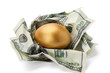Gold egg and money