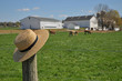 Amish straw hat on a Pennsylvania farm