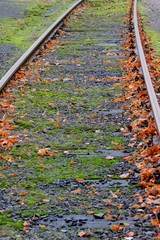Railway in the autumn