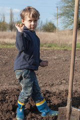 Boy planting potatoes in garden
