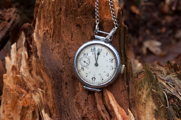 Vintage clock on a wooden stump in a forest