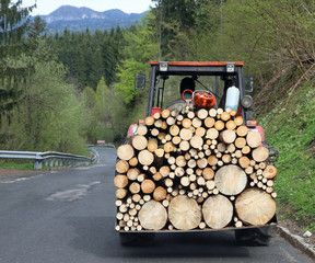 tractor transport a full load of wood 1