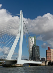 Erasmus bridge and skyscrapers of Rotterdam