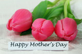 Fototapety Happy Mother's Day card with pink tulips