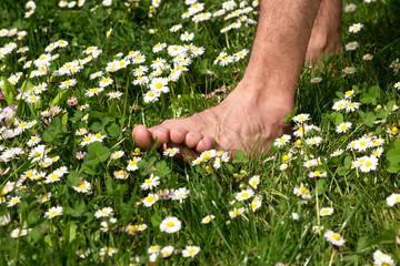 Nackte Füße auf einer Wiese