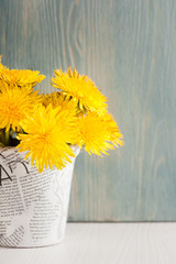 Dandelions in a pot on white blue wooden background