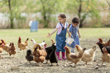 Two little girl feeding chickens - Fine Art prints