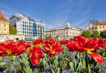 Zagreb colorful flora and architecture