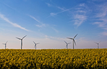 Windkraftanlage im Rapsfeld horizontal