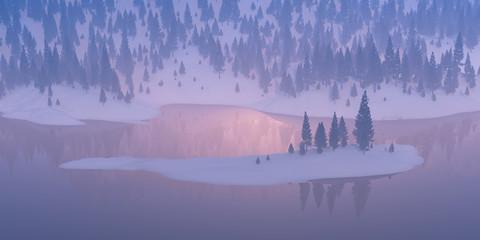 Fir tree on a snowy hillside.