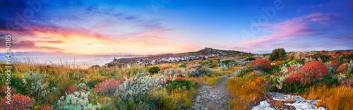 Sunset on the Mediterranean vegetation