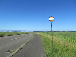 サロベツ原野とバス停