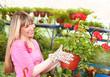 gardener holding flowerpot in  garden