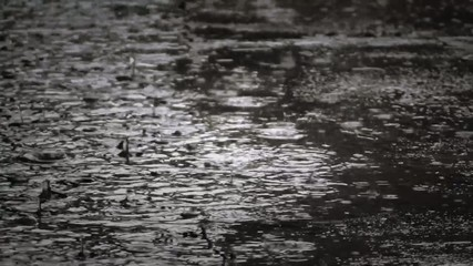 heavy rain with large drops