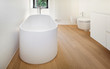 modern loft, bathroom with bathtub