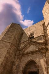Pietre di Puglia:Castel del Monte.-(Andria) ITALIA-