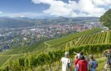 Blick über Oberkirch im Schwarzwald