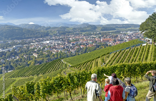 Keuken foto achterwand Wijngaard Blick über Oberkirch im Schwarzwald