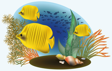Marine life with yellow fish, vector illustration