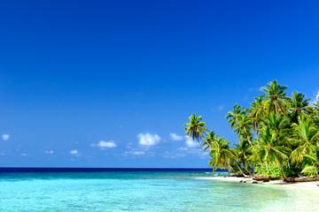 Strand mit Palmen