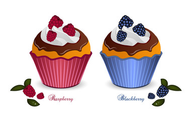 Set of two cupcakes with raspberries and blackberries