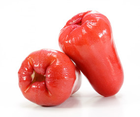 rose apple or chomphu on white background