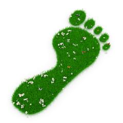 Ökologischer Fußabdruck - Einzelner Fuß