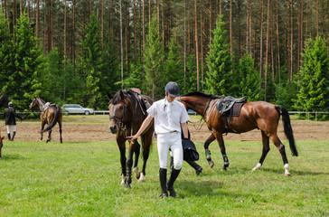 Man rider prepare horse steeplechase barrier race