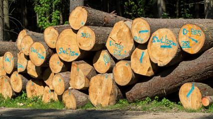 Holzwirtschaft - Holzverkauf vom Holzlagerplatz im Wald