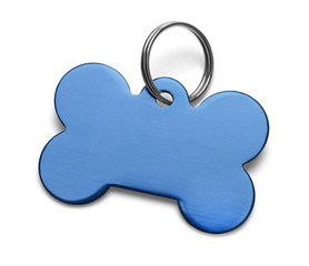 Blue Dog Tag