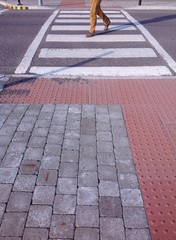 walking cross zebra crossing