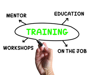 Training Diagram Shows Mentorship Education And Job Preparation