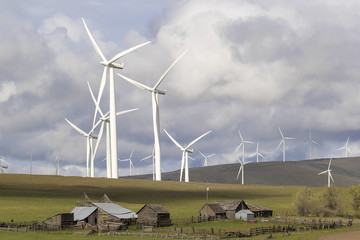 Wind Farm by Cattle Ranch in Washington State