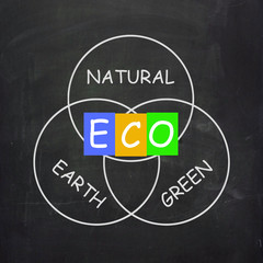 ECO On Blackboard Shows Environmental Care Or Eco-Friendly Natur