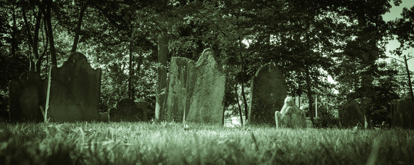 Old Cemeteries - Ground View Panorama