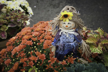 Tiny Scarecrow