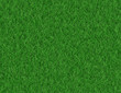 lush green grass backgrounds