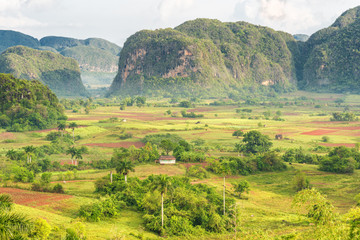 View of the Vinales Valley in Cuba on the early morning