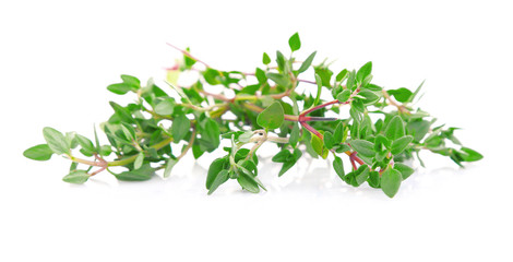 Fresh thyme isolated on white