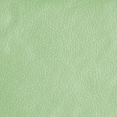 pale green leatherette