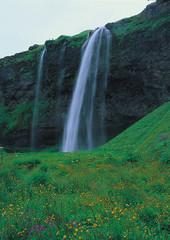 아이슬란드 여행포토