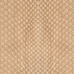 background of snake skin closeup