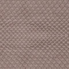 brown reptilian skin texture