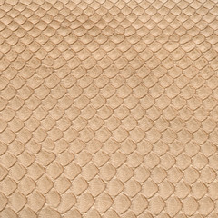 background of dressed snake skin closeup