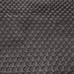 background of dressed black snake skin closeup