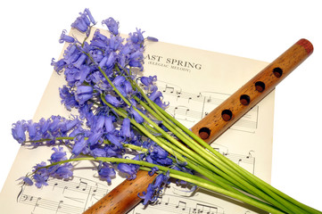 Spring Sheet Music And Bluebell Flowers