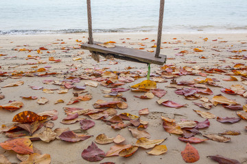 An old empty swing by a sandy beach