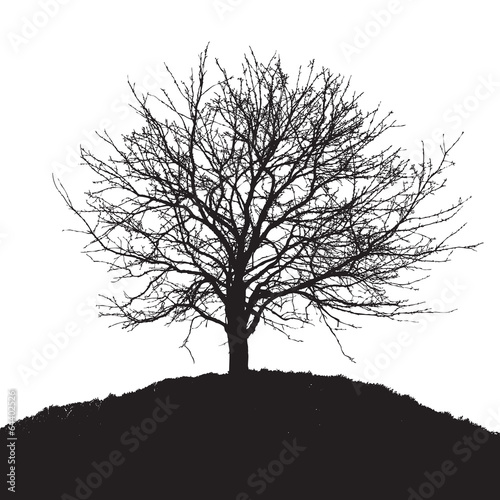 black tree silhouette - 64402526