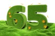 65 Jahre